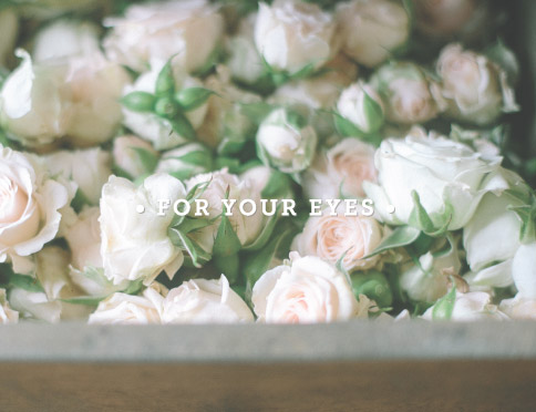 • For Your Eyes •